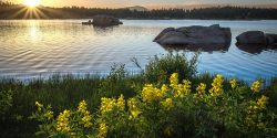 Dowdy Lakes